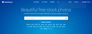 StockSnap-Imágenes-de-Stock-Gratis-BrandMe