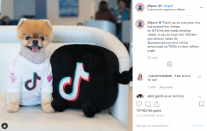 jiffpom-Perros-En-Instagram-BrandMe