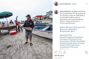 Gerardo-Del-Villar-Activistas-Ambientales-BrandMe