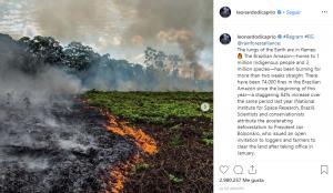 Lenardo-DiCaprio-Activistas-Ambientales-BrandMe